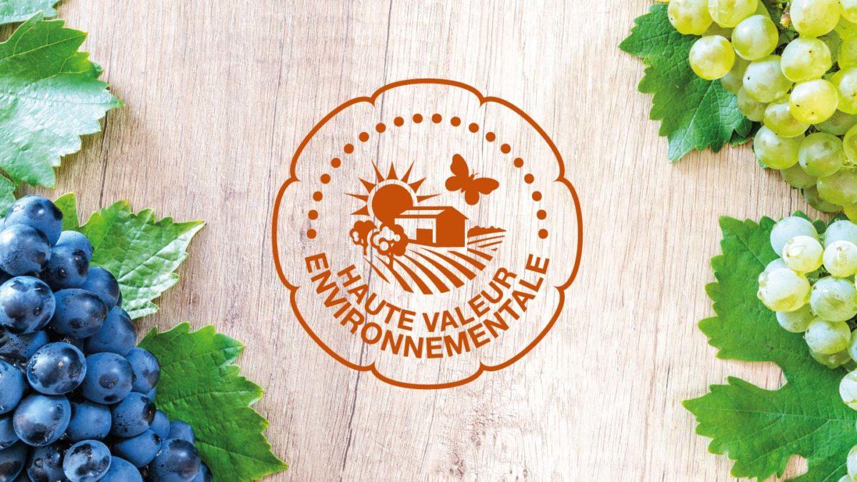 Logo du Label Haute Valeur Environnementale entourés de raisins